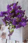 Оновлюємо дерев'яні ящики для квітів на балкон