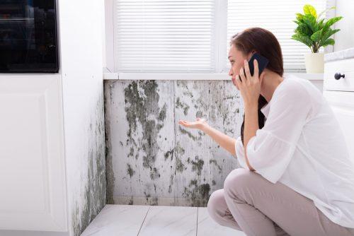 Грибок на стінах: як позбутися